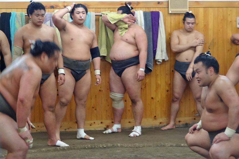 Sumo Training Rules